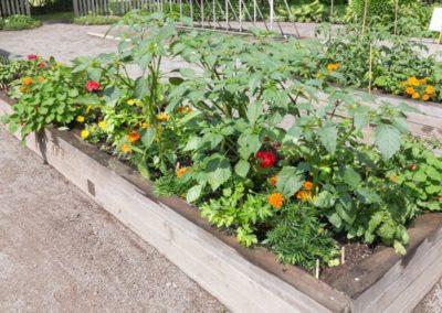 Middletown Community Gardens